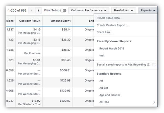 Facebook Ads Reporting and Optimization